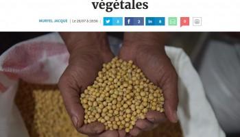 L'essor mondial des protéines végétales